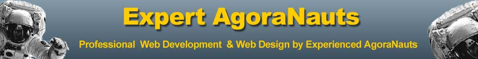 website design web development